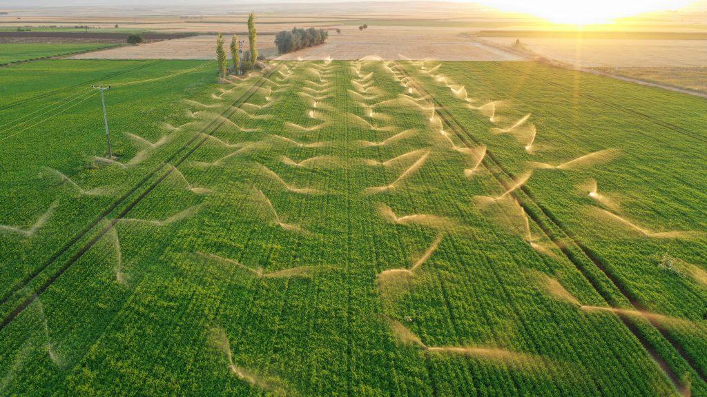 Auch die Bewässerung der Anbauflächen für Futtermittel haben Auswirkungen auf die Umwelt